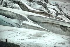 フィーシャー氷河