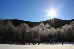 凍てつく朝、光