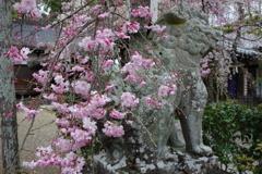 三輪恵比寿神社