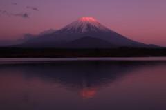 逆さ赤富士