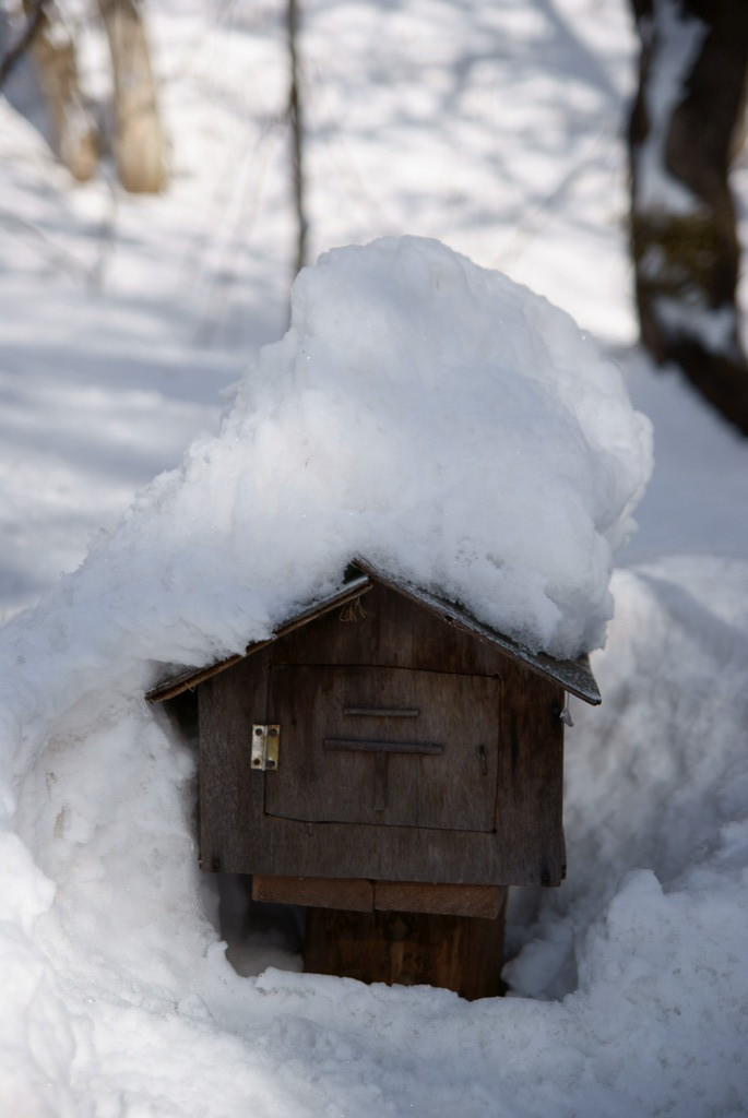 冬季配達受付中