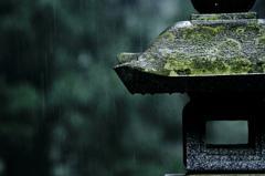 雨に洗われる石灯籠