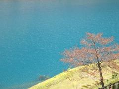 四万湖の水の色