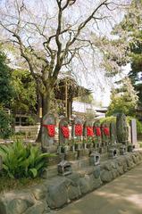 六地蔵と名残りの桜