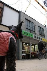 犬と商店街