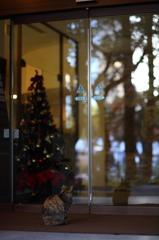 ガラス越しのメリークリスマス