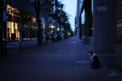 夜明けの街角
