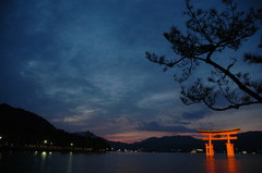 夕暮れの宮島、海に浮かぶ鳥居