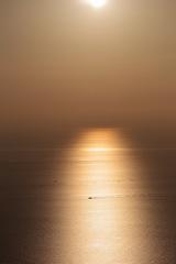 黄金色の日本海