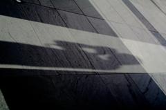 My shadow Ⅱ