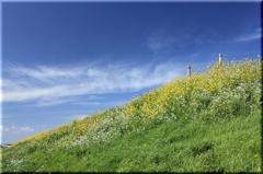 春の風を感じて...