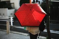 雨あがる。