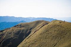 竜ヶ岳(三重)山頂付近05