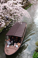 堀と桜と笑顔の春