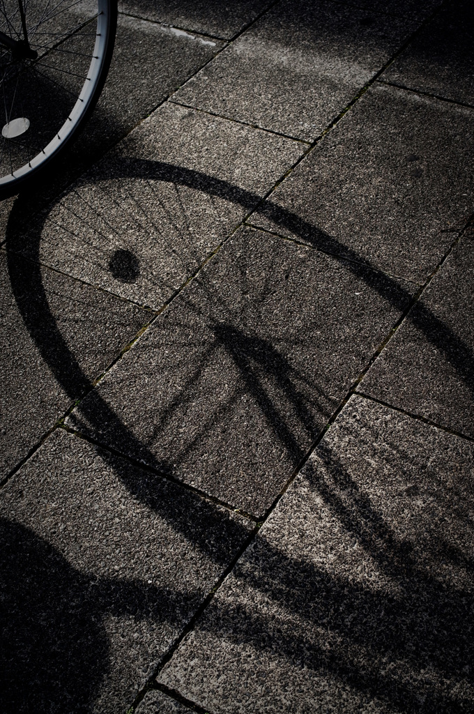 車輪のカタチ