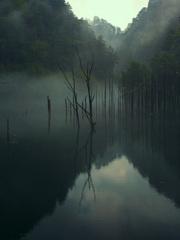 雨の中の自然湖