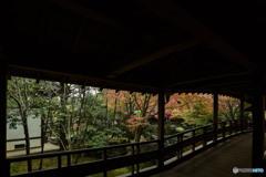 好古園秋景色(2)