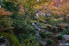 姫路好古園秋景色(1)