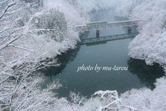 凍てついた川