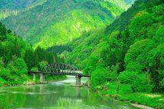 只見線、緑に染まる第四橋梁。