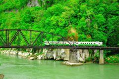 只見線、新緑の第四橋梁。