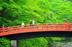 神橋、新緑。