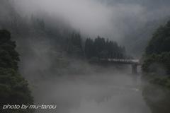 幽谷に霧漂う
