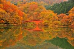 秋色シンメトリー