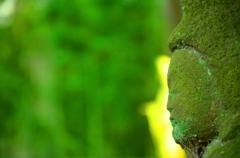 仏様 in the green