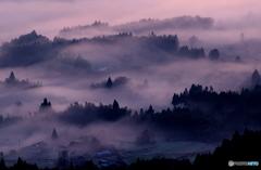 阿蘇の朝霧