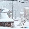 ふつうの雪の日