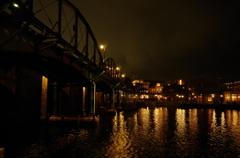 ディズニーシー夜景 ディズニーシー・エレクトリックレールウェイ 橋