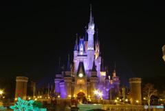 シンデレラ城と星