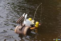 うさたまの釣り 釣ってるのは・・・