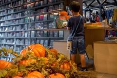 本とカボチャと‥読書の秋