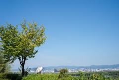 夏景色‥8月10日 日本一