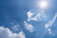 猛残暑‥お見舞い申し上げます。