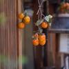 晩秋の趣‥京都風