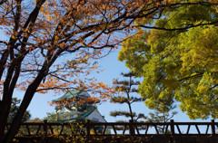 小秋日和の見なれた景色