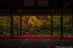 額縁の秋彩