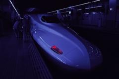 シリーズ 「鉄道と花の旅」 ~トロンⅡ~