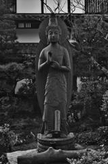 仏様 ~京都嵐山晩秋紀行~