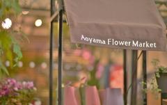「大好きなお花屋さん」