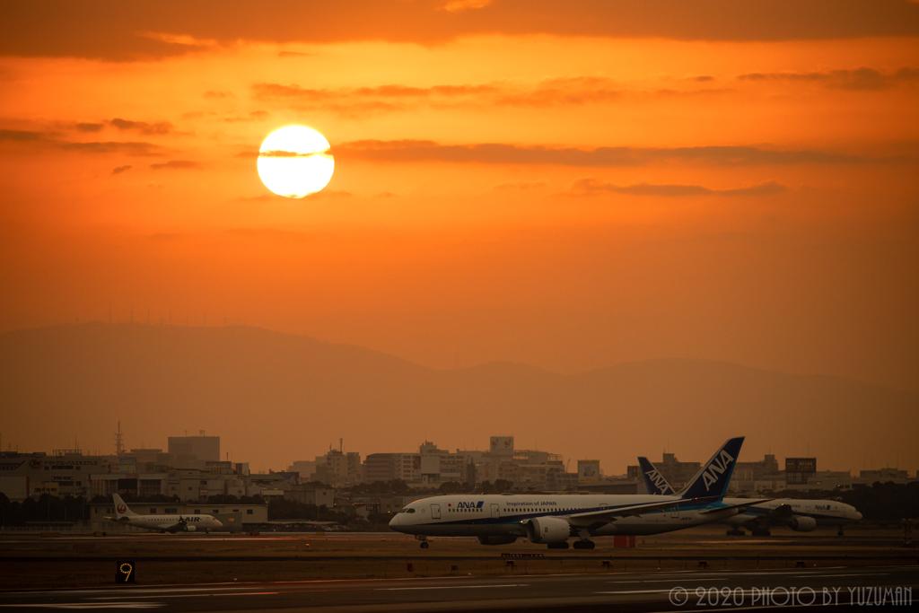 目覚める空港