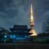 真冬の空に漂う東京タワー