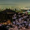東大寺と興福寺