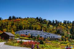 立山荘と紅葉