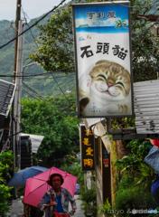 石頭猫?。。。謎でした。(台湾、九份にて)