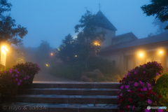 霧時雨 A foggy night in September.