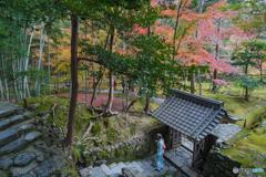 苔寺 向上関 辺り